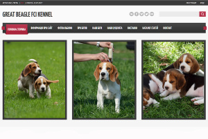 great-beagle-kennel