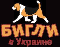 Форум Бигли в Украине