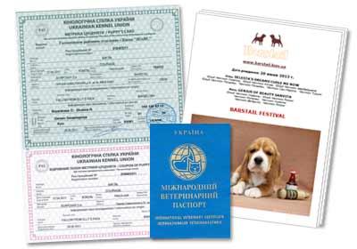 документы щенка КСУ
