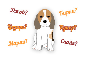 beagle puppy names