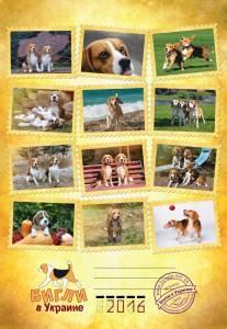 !title-beagle-kennel