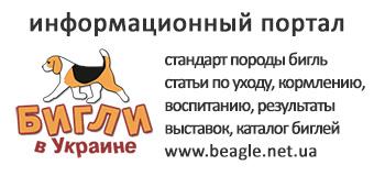 Бигли в Украине