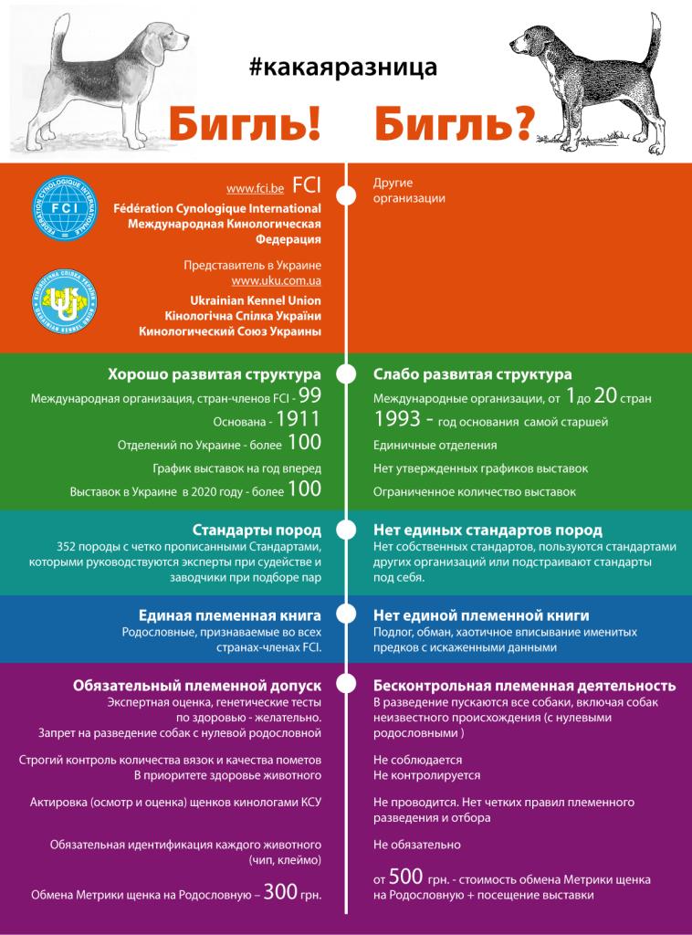 infographics_1580065282