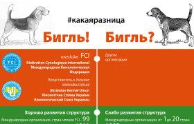 Документы КСУ-FCI или … какая разница?