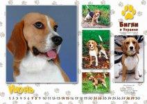 image kalendar06-jpg