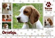 image kalendar10-jpg