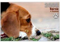 Календарь Бигли в Украине 2008