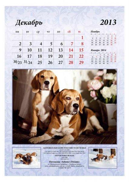 image 2013-beagle-a313-jpg