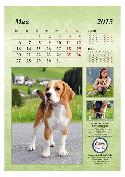 image 2013-beagle-a36-jpg