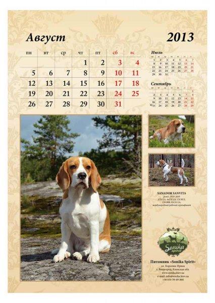 image 2013-beagle-a39-jpg