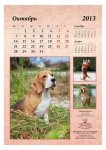 image 2013-beagle-a311-jpg