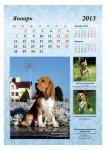 image 2013-beagle-a32-jpg