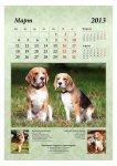 image 2013-beagle-a34-jpg
