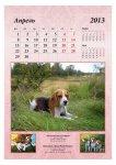 image 2013-beagle-a35-jpg