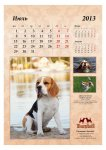 image 2013-beagle-a38-jpg