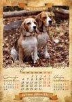 image beagle-2014-a3-11-jpg
