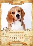 image beagle-2014-a3-3-jpg