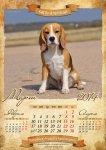 image beagle-2014-a3-4-jpg
