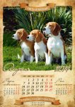 image beagle-2014-a3-5-jpg