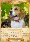 image beagle-2014-a3-6-jpg
