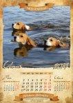 image beagle-2014-a3-7-jpg