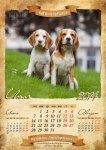 image beagle-2014-a3-8-jpg