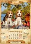 image beagle-2014-a3-9-jpg