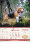 image beagle-2014-a3_13-jpg