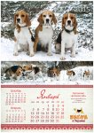 image beagle-2014-a3_2-jpg