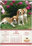 image beagle-2014-a3_6-jpg