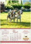 image beagle-2014-a3_8-jpg