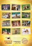 image title-beagle-kennel-jpg