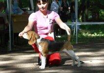 image uzhgorod_21-220810_19-jpg
