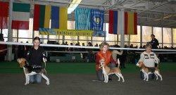 31-10-2010 - Киевские встречи