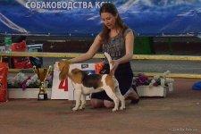 12-05-2012 - CACIB, Одесса